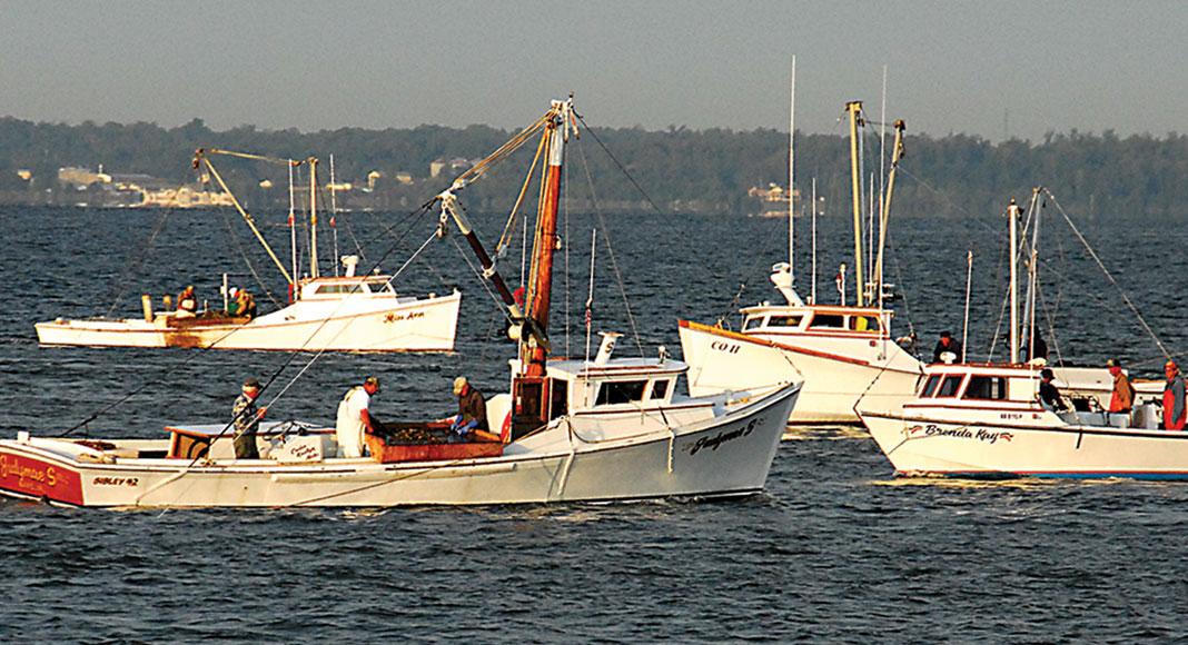 Slider_Boats
